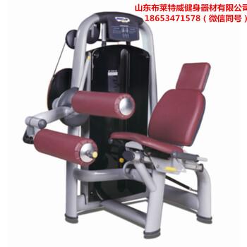 私教工作室健身房用健身器材山东布莱特威健身器材图片价格太空