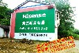 随州市全境户外墙体广告专业户外刷墙广告工人