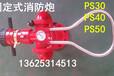 供应消防水炮PS30PS40PS50