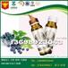 華南地區新品開發藍莓果汁飲料OEM工廠