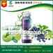 青梅藍莓果汁飲品養生管理代加工工廠