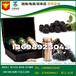 微商直销黑莓牡蛎片剂ODM制造厂商