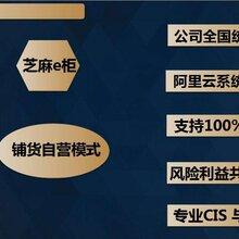 广西南宁芝麻e柜全国服装连锁店开业盛典,免费铺货。