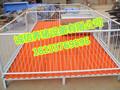 小猪保育床价格仔猪保育床好处诚信厂家专业生产高培保育床图片