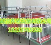 热销款母猪产床养猪设备单体双体复合板猪产床养殖设备价格