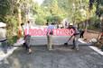 福建漳州透水地坪摊铺机厂家移动式液压动力站价格一览