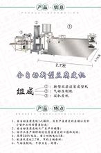 供应内蒙古地区全套豆腐皮机加工机器干豆腐机生产设备图片