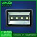 集成led投光燈200W質保兩年50W投射燈100W泛光燈150W廣告LED射燈