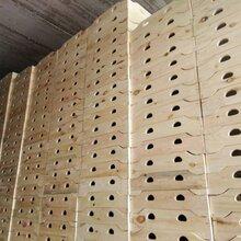 长期生产定制销售幼儿园六格柜、七格柜、卡通柜等实木学校家具图片
