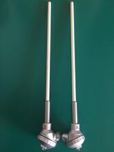 B型雙芯熱電偶雙鉑銠熱電偶WRR2-130圖片