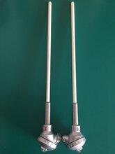 B型双芯热电偶双铂铑热电偶WRR2-130图片