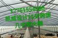 新型农业大棚钢架凯威几字钢骨架