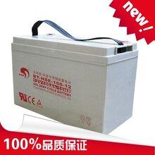 太阳能、风能专用胶体蓄电池赛特BT-HSE-100-12(12V100Ah/10HR)