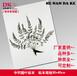 中药腊叶标本腊叶标本规格:3040cm植物标本