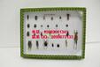 昆虫标本盒害虫二十五种标本害虫标本昆虫标本教学标本