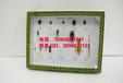 昆虫标本昆虫分类十三目标本盒教学标本户外采集