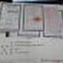 免费办理注册阿里巴巴诚信通工商营业执照店铺托管运营电商.