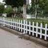 武汉pvc草坪护栏_pvc绿化护栏_武汉pvc护栏厂家