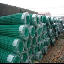 荷兰网围栏特价销售250丝——450丝环保绿色浸塑牢固防腐蚀图片