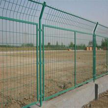 绿色隔离栅现货供应规格齐全300丝-500丝1.83米图片