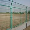 绿色隔离栅现货供应规格齐全300丝-500丝1.83米