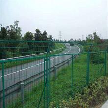 河北厂家直销隔离栅,车间隔离网,护栏网,浸塑,防腐蚀,防锈图片