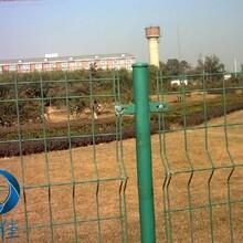 安平耀佳专业生产双边丝围栏网