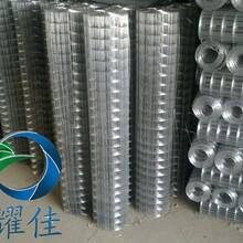 河北电焊网电焊围网抹墙网