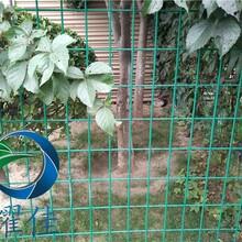 养殖网、围栏网、荷兰网