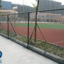 勾花护栏网厂家养殖围栏网,铁丝围栏网
