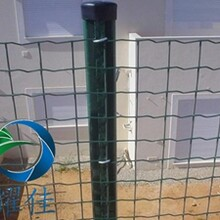 外墙保温热镀锌电焊网-安平耀佳丝网