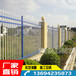 厂家塑钢栏杆围墙护栏三亚酒店围墙栅栏旅游专用锌钢围栏