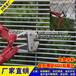 阳江机场密纹网定做清远监狱358防攀爬护栏围栏网价格