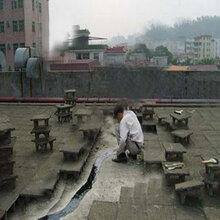 惠州楼面防水补漏公司,楼顶防水价格,屋面防水堵漏找旺固图片