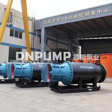 具有移動式高揚程排水的混流泵圖片