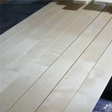 四川樂山運動木地板施工工藝生產廠家圖片