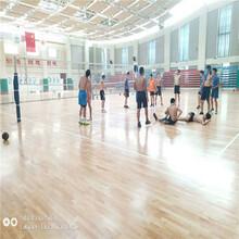 湖南湘潭運動木地板施工價格價格成本圖片