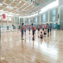 阜新篮球馆专用运动木地板专业结构图片