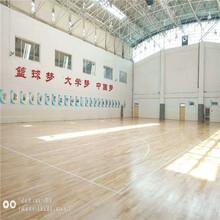 日照體育館運動場木地板管理圖片