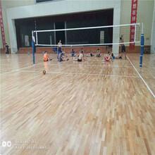 河南沁阳运动地板体育馆信誉最佳图片
