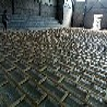 彭水体育馆运动木地板变化
