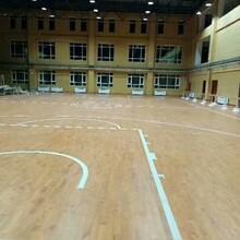 广西南宁体育专用运动木地板使用途径图片