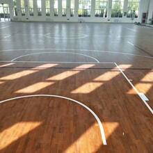 甘肃天水体育馆运动木地板厂家一线品质图片