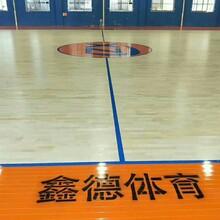 河北沧州羽毛球馆运动木地板厂家使用途径图片