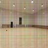 体育馆木地板