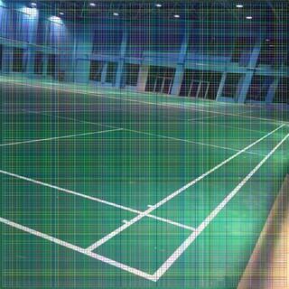 龙岩篮球馆专用木地板持续推进图片6