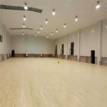 北碚籃球館專用運動木地板專業結構圖片