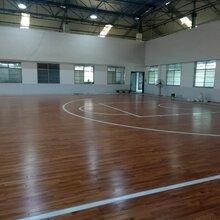 鄢陵县枫木运动木地板周期图片