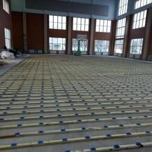 吉林枫木运动木地板设计图片