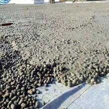 上海輕集料混凝土價格上海陶?;炷羶r格圖片